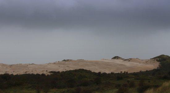 Nationaal Park Zuid Kennemerland 사진