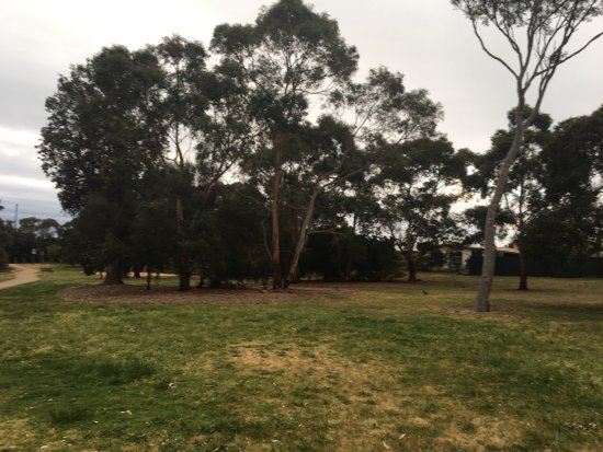 Armstrong Reserve