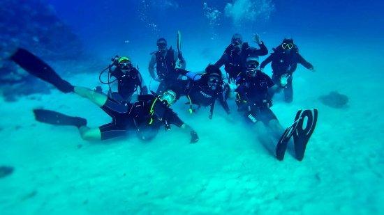 Funny Divers Diving Center: IMG-2a4dd5b73e9014ec8f206d389d7371d8-V_large.jpg