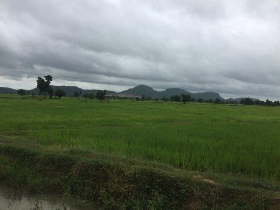 バタンバン Picture