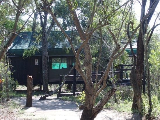 Pungwe Safari Camp: photo5.jpg