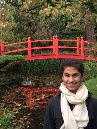 Tully, Ireland: Lovely Japanese gardens