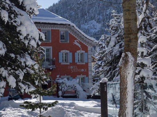 Hotel Steinbock im Winter