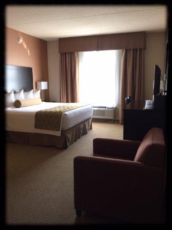 Best Western Plus Perth Parkside Inn & Spa: King-Bed Room facing Park.