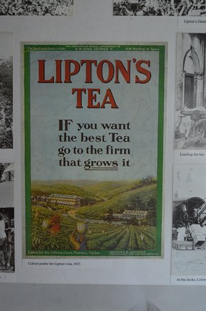 Ceylon Tea Museum: Tag line which is true for today also