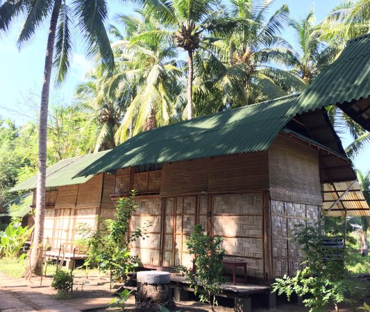 Authentic, peaceful and quiet eco forest hideaway