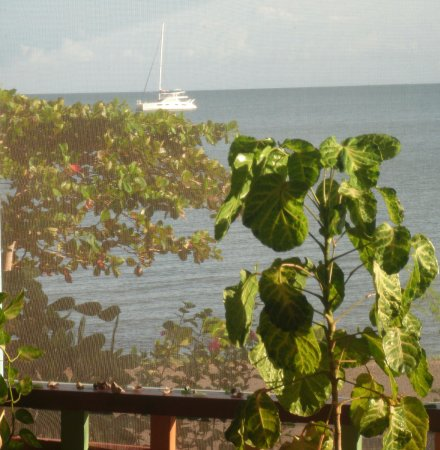 Punta Gorda, Belice: A view of the Bay of Honduras from the screened in deck/restaurant area at The Mangrove Inn*