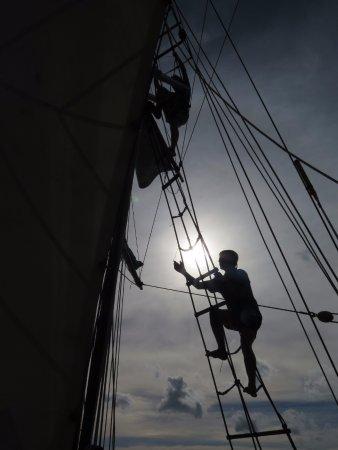 Voyager New Zealand Maritime Museum : Breeze Gulf Experience