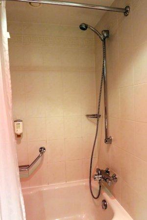 Lindner Congress Hotel: Dusche in der Wanne