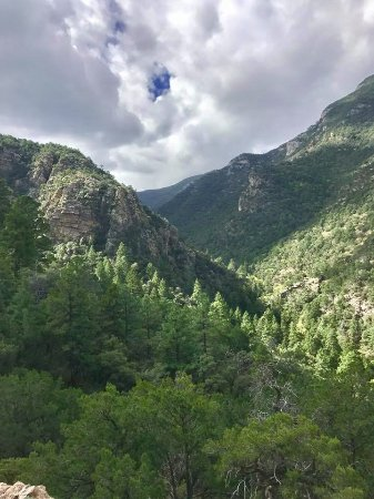 Hereford, AZ: hiking in ramsey canyon