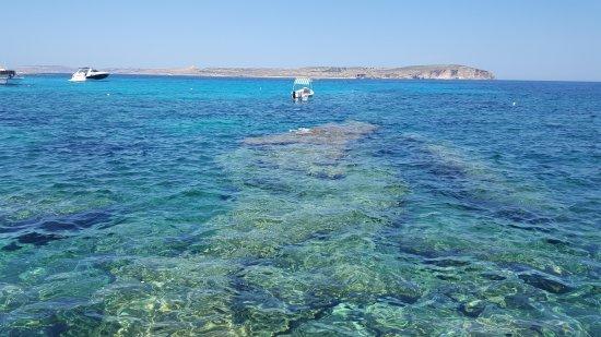 Armier Bay Beach: Armier bay