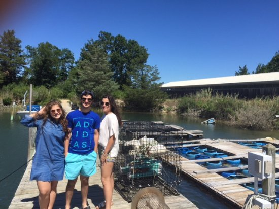 Southold, Estado de Nueva York: Oyster Farm Tour