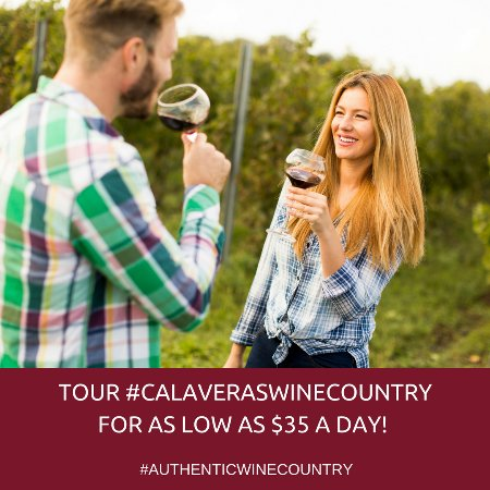 Murphys Wine Tours