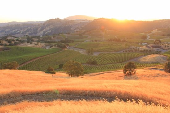 Murphys, CA: #VisitCalaveras