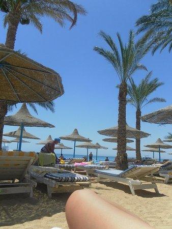 Marlin Inn Azur Resort: Dessole Marlin Inn Beach Resort