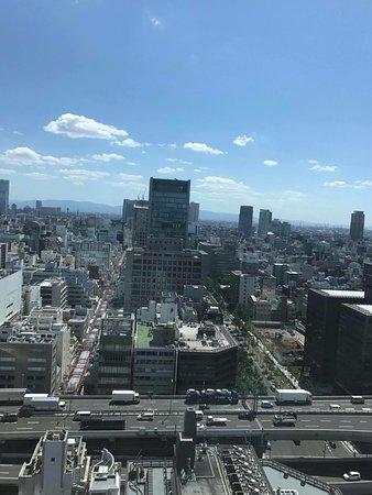 The St. Regis Osaka: 窗景