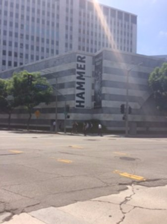 Hammer Museum: View From Hilgard St.