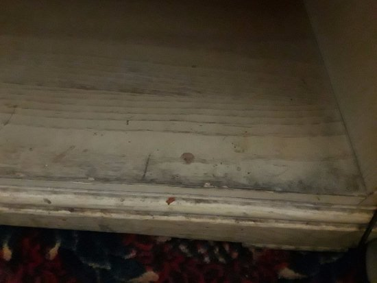 Yonkers, NY: Table in between beds