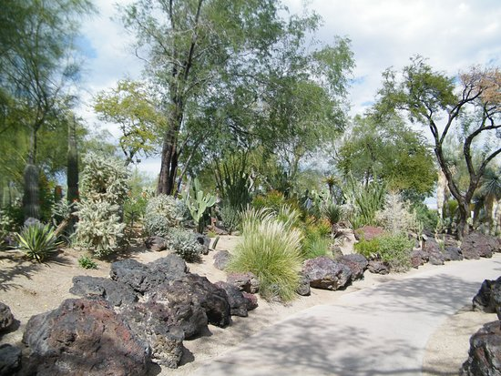 Cactus Gardens Picture Of Ethel M Chocolates Factory And Cactus Garden Henderson Tripadvisor