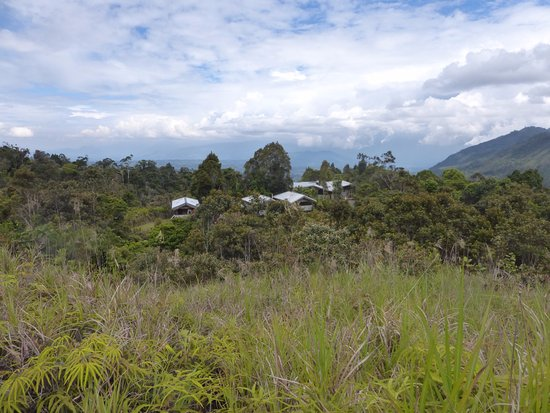 Mount Hagen, Papua-Nova Guiné: Only a few rooms shown - the rest are in the forest