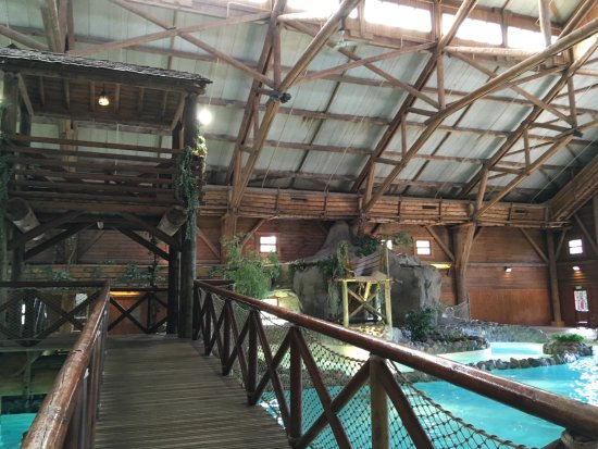 Entr e de la piscine restaurant picture of disney 39 s davy for Piscine hotel davy crockett