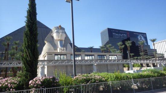 Luxor hotel casino vue de face vue extérieure lobby réception aménagement intérieur