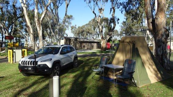 Mannum, Australien: Grassed, shaded camp ground