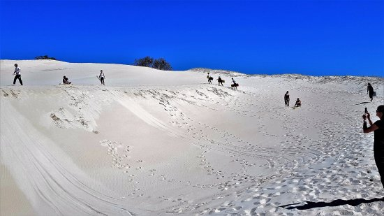 Colchester, South Africa: Summer sand dunes