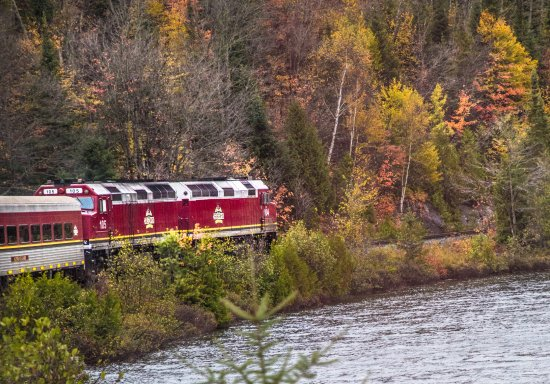 Agawa Canyon Tour Train: I was on Car #5 and took this photo out of the right side of the train.