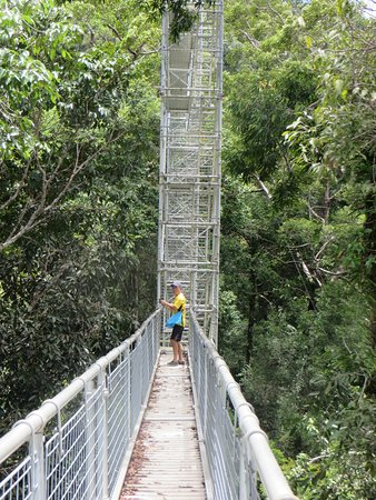 Ulu Temburong National Park, Brunei : Aerial walkway and trust guide; and more climbing up/down options