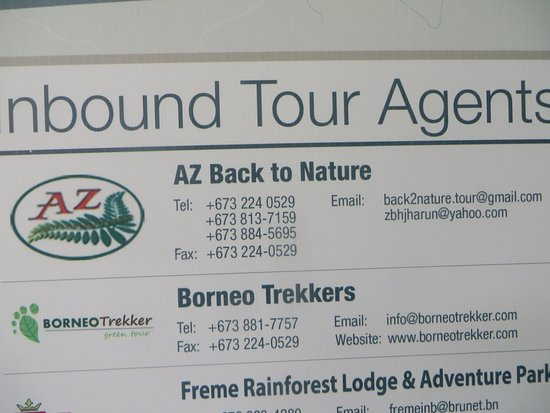 Ulu Temburong National Park, Brunei : Tour Agents AZBackToNature; responsible for an exciting day in the rain forest.