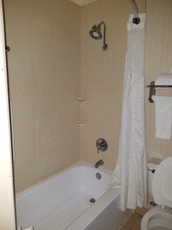 Holiday Inn Bloomington Photo
