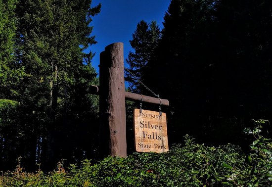 Silver Falls State Park: IMG_20171023_113555_large.jpg