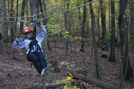 Glenmont, OH: A fun day at Tree Frog Canopy Tours
