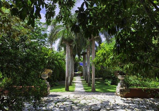 Tixkokob, México: Chapel Road