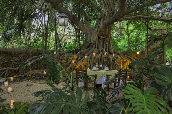 Tixkokob, Meksika: Romantic Dinner setup
