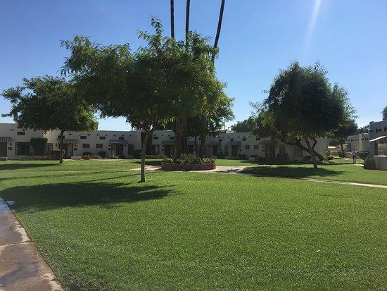 Litchfield Park, AZ: photo7.jpg
