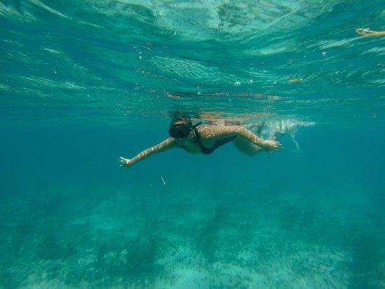 Bayahíbe, República Dominicana: Isla Saona Snorkeling Excursion