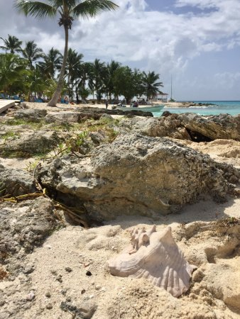 Bayahibe, Dominican Republic: Isla Saona Snorkeling Excursion