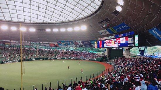 Seibu Prince Dome: photo1.jpg