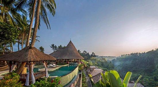Viceroy Bali - UPDATED 2017 Prices & Hotel Reviews (Ubud) - TripAdvisor