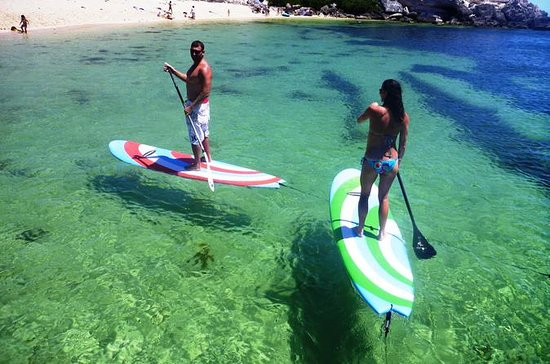Stand Up Paddle Board Lesson in...