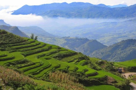 1 day Private tour Sapa trekking Y...
