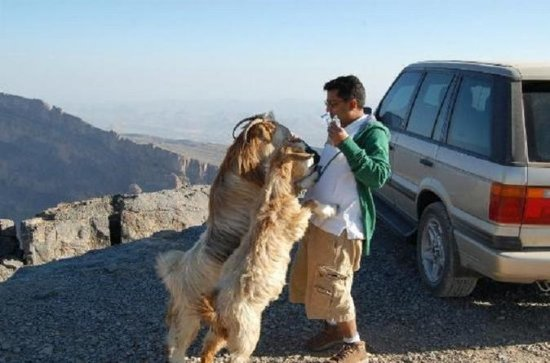 Jebel Shams (Day trip) 4WD The Grand...