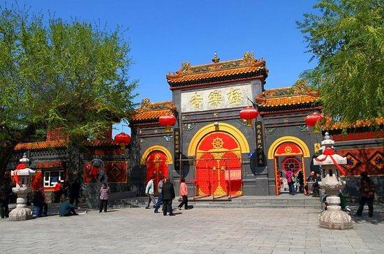 Private Half Day Tour Harbin...