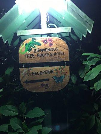 Tree Houses Hotel Costa Rica: photo4.jpg