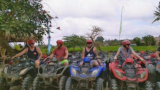 Daneswara Bali Tours
