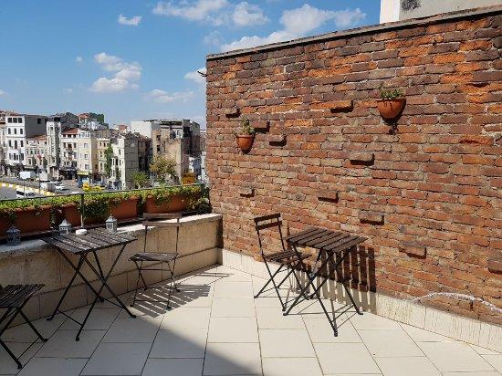 Peradays: Roof