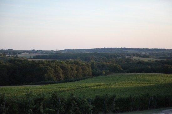 Monbazillac, Francia: Le panorama.