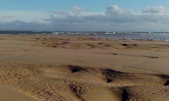 Bretteville-sur-Ay, France: Am Strand und in den Dünen